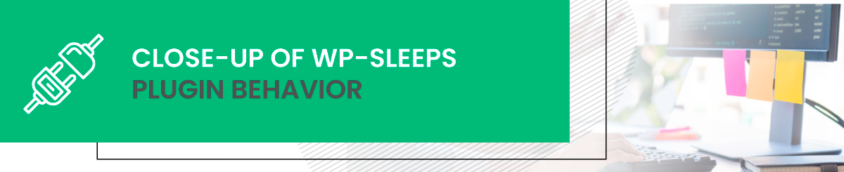 Close-up of wp-sleeps plugin behavior