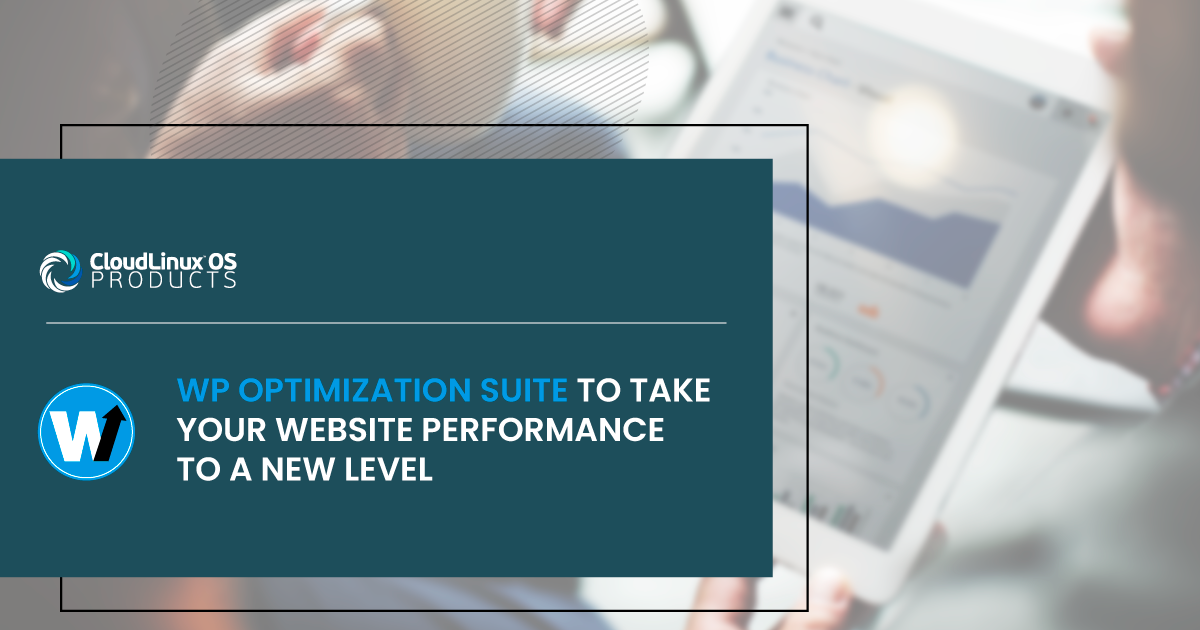 WP Optimization Suite to Take Your Website Performance to a New Level